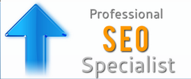 Professional SEO is a must for your website.